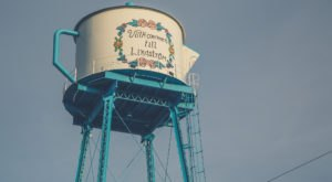 Try To Spot These Quirky Water Towers On Your Next Minnesota Road Trip