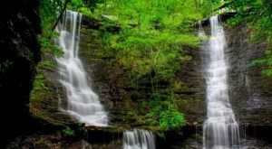 You'll Do A Double Take When You See The Wildman Twin Falls For Yourself In Arkansas