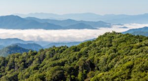 The Great Smoky Mountains National Park Was Named The Most Beautiful Place in Tennessee And We Have To Agree