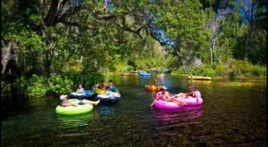 Ichetucknee Springs Tubing In Florida Has Been Called The Best In The State