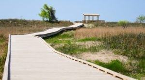 Follow A Sandy Path To The Waterfront When You Visit Headlands Beach State Park In Ohio