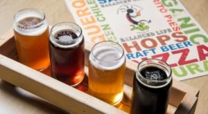 Enjoy A Delightful Menu Of Brats And Brews At Kaktus Brewing Company In Bernalillo, New Mexico