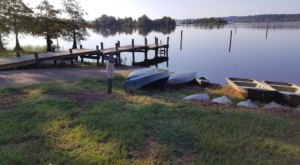 You'll Never Run Out Of Things To Do At Lake D'Arbonne State Park In Louisiana