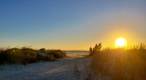 Follow A Sandy Path To The Waterfront When You Visit Holly Beach In Louisiana