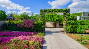 Relax In Over 2,000 Beautiful Blooms At The Botanical Garden In New Orleans