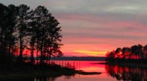 The Toledo Bend Reservoir Is An Otherworldly Destination On The Louisiana Border