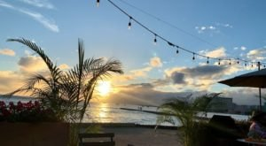 The Only Thing Better Than The Food Are The Beachfront Views At Barefoot Beach Cafe In Hawaii