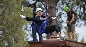 You Can Soar Through The San National Juan Forest In Colorado With The Exciting Durango Adventures