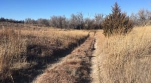 9 Kansas Pet-Friendly Trails You And Your Dog Can Hike Together