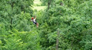 The Long Hollow Canopy Tours Through Tapley Woods Is Illinois' Longest Aerial Adventure