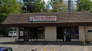 Devour Wonderful Baguettes And Colorful Sweets At Harvest Bakery In Connecticut