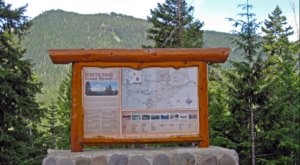 Roll The Windows Down And Take A Drive Down White Pass Scenic Byway In Washington