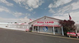 The Biggest And Best Flea Market In Kentucky, Flea Land Has Now Reopened