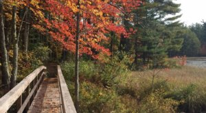 Beaver Brook Is A Scenic Outdoor Spot In New Hampshire That's A Nature Lover's Dream Come True