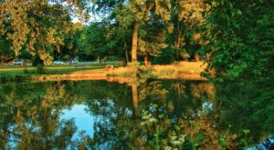 With A Foot Bridge And Riverside Trails, Curtiss Park In Michigan Is Downright Enchanting