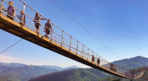 The Gatlinburg SkyBridge In East Tennessee Is The Longest Pedestrian Suspension Bridge In North America
