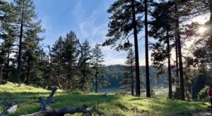 The Picturesque Hike At Laguna Meadows Loop In Southern California Is The Perfect Trail For Soaking Up The Sights And Sounds Of Nature