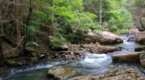 Hike To Julias Falls In Tennessee For Some Of The Most Breath-Taking Views In The State