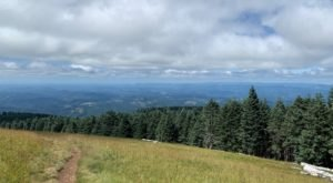 Take The Marys Peak Trail In Oregon For Views And Vistas That Go On Forever