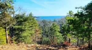 For A Short And Sweet Scenic Trail With Massachusetts Water Views, Coolidge Reservation Trail Is Perfect For You