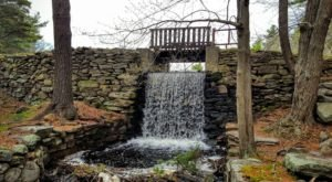 With Gorgeous Waterfalls, Ponds, And More, Douglas Forest Wallis Pond Loop Trail In Massachusetts Has It All