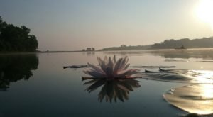 Iowa's 200-Acre Dale Maffitt Reservoir Is Truly A Hidden Gem You'll Want To Explore