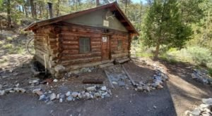 Hike To The Century-Old Hidden Forest Cabin In Nevada Where You Can Even Spend The Night