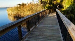 Village Point Park Preserve Is One Of Alabama's Best-Kept Secrets