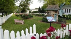 Plan A Visit To Sisson's Peony Gardens. They Put Rosendale On The Map As The Peony Capital Of Wisconsin