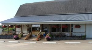 Skelly's Farm Market Is Your Source For Fresh Produce, Beautiful Blooms, And Family Fun In Wisconsin