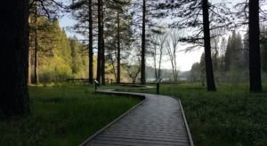 Sly Park Recreation Area Is An Incredible Spot In Northern California That Will Bring Out Your Inner Explorer