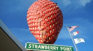 Small Town Iowa Is Home To The Largest Strawberry In The United States