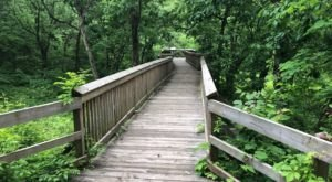 This Easy 18-Mile Trail Network In Missouri Features A Boardwalk, Limestone Boulders, And Wildflowers