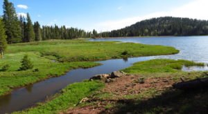 San Gregorio Reservoir Is One Of The Most Underrated Summer Destinations In New Mexico