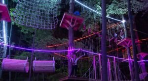 Climb Among Colorful Lights During Glow Nights At TreeRunner Adventure Park In Michigan