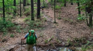 6 Rugged Forest Trails In Louisiana That Will Bring Out The Explorer In You