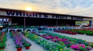 Stock Up On Fresh Fruits And Veggies At These 8 Mississippi Produce Stands