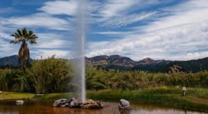 Northern California Boasts Its Very Own Old Faithful Geyser And It's An Extraordinary Sight To See