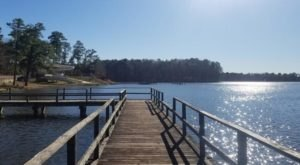 With A 150-Acre Lake, Pool, And Waterslide, Roosevelt State Park In Mississippi Is A Summer Must-Visit