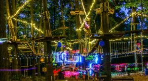 Climb Through Magical, Glowing Treetops During The Special Glow In The Park Adventure At The Adventure Park In New York