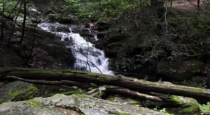 Tucquan Glen Loop Trail Is A Low-Key Pennsylvania Hike That Has An Amazing Payoff