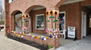 You'll Find Everything You Need For Your Next Project At Long Tail Knits, A Charming Ohio Yarn Shop