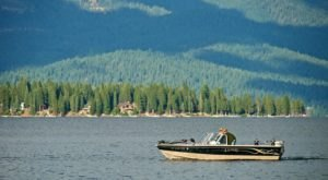 Lake Almanor Is One Of The Most Underrated Summer Destinations In Northern California