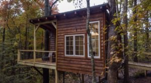 Enjoy The Natural Beauty Of Tennessee With A Stay At One Of These Gorgeous Treehouse Cabins