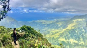 Get Lost In A Labyrinth Of Hiking Trails At Kōkeʻe State Park In Hawaii