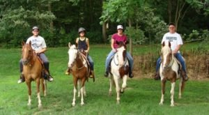 Take A Majestic Horse Ride Tour Through The Forest With Riverside Stables In Illinois