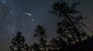 For A Front Row View Of A Dazzling Meteor Shower, Plan A Trip This Month To Arkansas' Wilderness Rider Buffalo Ranch