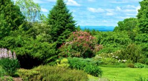Distant Hill Gardens Is One Of The Most Underrated Summer Destinations In New Hampshire