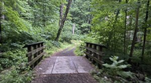 Explore Gorgeous Waters On The Squantz Pond Trail, A Scenic 2-Mile Hike In Connecticut