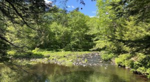 A 4-Mile Hiking Trail In New Hampshire, The Gonic Trails Long Loop Is Full Of Babbling Brooks